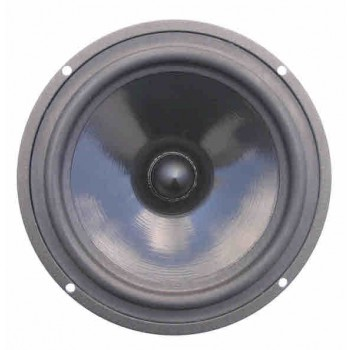 Seas CC17RC/P H0868-08 Woofer - rear - Prestige Series