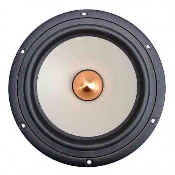 Seas W18E001 E0027-08 (E0018-08 shielded) Woofer - Front